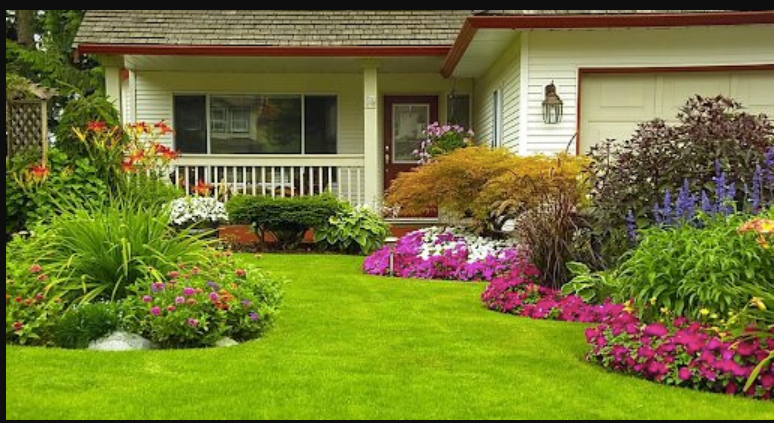 Essential Things To Consider When Choosing A Landscaping Company